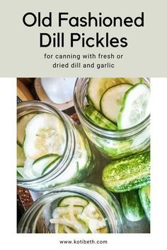 How to make an old fashioned dill pickle recipe. These homemade dill pickles can be made as slices, spears, or chips. They are crunchy with pickle crisp or with grape leaves. This recipe canning is easy with a water bath. They have a dill and garlic flavor in this canned dill pickle recipe. #canning #pickles #dillpickles Canning Dill Pickles, Garlic Dill Pickles, Pickled Garlic, Kosher Pickles, Old Fashioned Dill Pickle Recipe, Easy Dill Pickle Recipe, Kosher Dill Pickle Canning Recipe, Refrigerator Kosher Dill Pickles Recipe