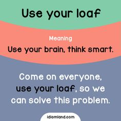 Idiom of the day: Use your loaf.  Meaning: Use your brain, think smart.  Example: Come on everyone, use your loaf, so we can solve this problem.