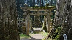 Koya-san, Japan. The walk to Kobo Daishi's mausoleum is filled with more than 200,000 gravestones, monuments and memorials (no bodies are buried here), all sharing space with moss-covered Shinto torii gates and thick forest.