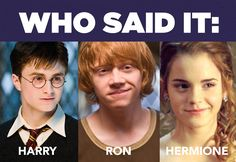 Who Said It: Harry, Ron, Or Hermione? I got 10 out of 10