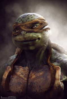 Teenage Mutant Ninja Turtles - Michelangelo by Jared Krichevsky *