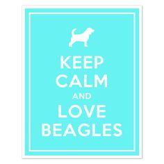 Beagle love :)