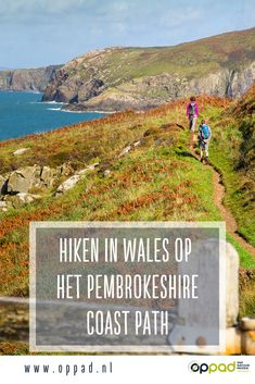Hiken in Wales op het Pembrokeshire Coast Path - een aanrader! Pembrokeshire Coast Path, Best Hikes, Day Hike, Future Travel, Hiking Trails, Where To Go, Trip Planning, Wales, Netherlands