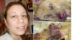 Woman that torched her pet dog and left the canine to DIE in pain get charges DROPPED! Sign Now! | YouSignAnimals.org