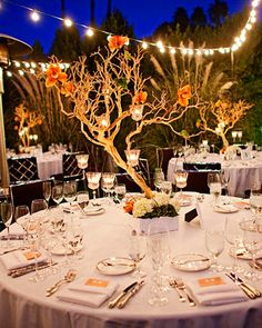 Orchids and votives hanging from tree branches make grand and beautiful centerpieces