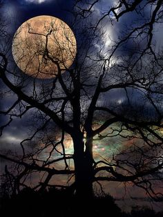 Mond by helmerpeter Moon Moon, Moon Art, Stars And Moon, Shoot The Moon, Pics Of The Moon, Full Moon Pics, New Moon Pictures, Beautiful Moon Pictures, Moon Painting