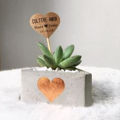 Cement Art, Concrete Art, Concrete Planters, Diy Planters, Concrete Sculpture, Beton Diy, Concrete Crafts, Garden Shop, Succulent Pots
