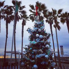 Christmas tree   Palm trees  Cloudy sky ⛅️ . Cross Country trip December 2016 San Diego, California  過去生リーディング➕冥界カケラ拾い➕カケラ癒しのご依頼はコチラ https://plaza.rakuten.co.jp/arian111/  #crosscountry #spiritual #trip #imperialbeach #sandiego #california #america #ocean #beach #palmtree #christmastree #sky #clouds #クロスカントリー #スピリチュアル #旅 #インペリアルビーチ #サンディエゴ #カリフォルニア #アメリカ #海 #ヤシの木 #クリスマスツリー #空 #雲 #浜辺 #imperialbeachlocals #sandiegoconnection #sdlocals #iblocals - posted by Arian…