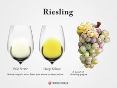 The taster's guide to Riesling wine.