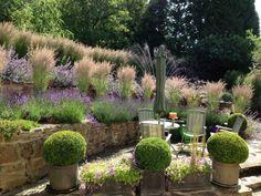 Gartengestaltung mit pflegeleichten Pflanzen für natürlichen Look des Gartens