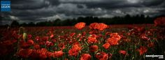 Royal British Legion - Remembrance Day Poppy Appeal Facebook Cover