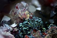 Blackberry, Beautiful Rocks, Fruit, Crystals, Germany, Stones, Unique, Collection, Minerals