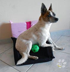 """Cuccia da interni per cane - gatto costruita interamente con materiali riciclati. Imbottitura: Lattice Esterni: Indumenti riciclati Dimensioni: larghezza min 35cm, max 50cm - spessore 4cm - profondità 50cm Questa creazione fa parte del progetto """"Malice for ANIMALS"""" per raccogliere fondi da destinare all'aiuto degli animali randagi. link allo shop: http://it.dawanda.com/product/90130051-cuccia-per-cane---gatto-materiali-riciclati"""