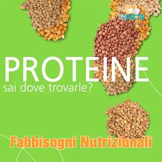 Sai dove trovare fonti di proteine per la tua dieta giornaliera? #capirelanutrizione