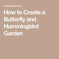 How to Create a Butterfly and Hummingbird Garden