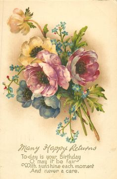 MANY HAPPY RETURNS anemones & forget-me-nots