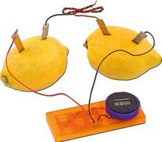 Die Zitronen-Uhr. | BACKWINKEL