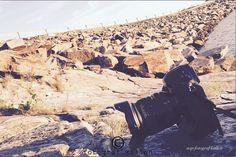 Juniminner 2016 » fotografkallen.com Prints For Sale, Grand Canyon, Nature, Travel, Naturaleza, Viajes, Destinations, Grand Canyon National Park, Traveling
