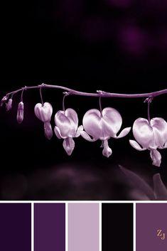 ZJ Colour Palette 251 #colourpalette #colourinspiration