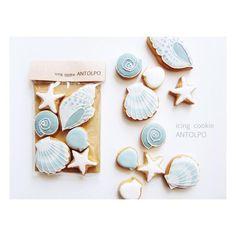 Antolpo Seashells Icing Cookies