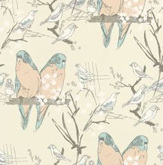Budgie (AOW-BUDGIE 02) - The Art of Wallpaper Wallpapers - A fun and quirky budgie design in a hand skectched effect. Showing in blue and peach on an off white background - another colour way is available. Please request a sample for true colour match.