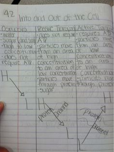 lots of great interactive notebook ideas for biology