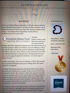 Chronic Kidney Disease, Bullet Journal, Blog