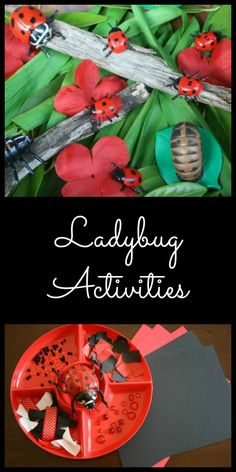 Ladybug Activities for Kids...easy to make ladybug small world and art activity