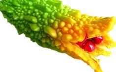 Uma planta muito simples consegue matar até 98% de células cancerígenas e também frear a diabetes. Suas propriedades são realmente impressionantes! Este texto foi traduzido e adaptado do artigo original, escrito pelo Dr. Frank Shallenberger. Trata-se de uma tradução livre...