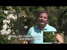 jardiner en avril - YouTube