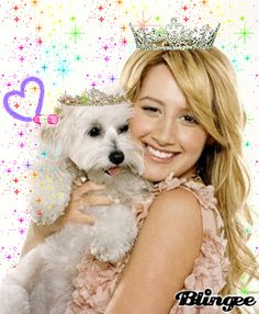 High School Musical Sharpay S Dog Breed