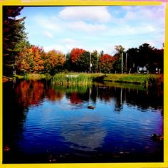 Duck Pond, Kingston/Greenwood village borders, Nova Scotia, Canada.  Fall, 2011