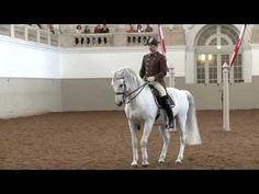 The Spanish Riding School of Vienna. Part 2/2. - YouTube