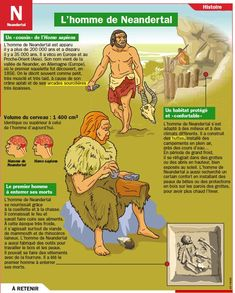 mon petit quotidien l homo sapiens Fun Learning, Teaching Kids, Medical Mnemonics, Cultura General, French Phrases, French Language Learning, Home Schooling, Learn French, Best Teacher