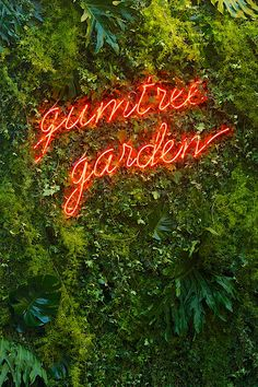laostudio: Gumtree Pop Up Garden Bar - Modern Bar Pop Up, Restaurant Design, Restaurant Bar, Green Bar, Wayfinding Signage, Shop Signage, Wall Bar, Plant Wall, Neon Lighting