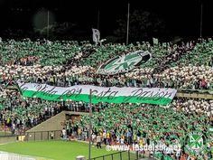Atletico Nacional Medellin, Colombia. Colombian Culture, Colombia South America, Thing 1 Thing 2, Club, World, Ava, Beautiful, Tattoo, Star