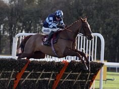 Roll with Rock at Exeter  https://www.racingvalue.com/roll-with-rock-at-exeter/