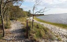 Many trails to walk, sights to see across North Carolina through HIKE NC