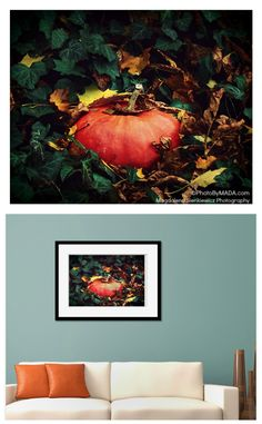 PUMPKIN IN THE IVY - PhotoByMADA.com Magdalena.Sienkiewicz Photography Available Sizes 8x10"
