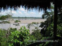 дикая природа Перу и Эквадора