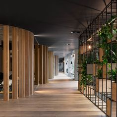 "SLACK European HQ by ODOS Architects.""The concept of the design originated from the urban grain of Dublin City,"" said the architects. ""Unlike the planned American streets with a regular street grid system, the streets of Dublin have a unique fluidity to their routes which in essence became the core of the concept."""