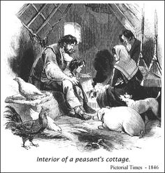 Interior of a peasant's cottage.