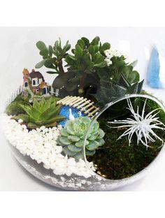 Bahçe Konsept Teraryum - 1