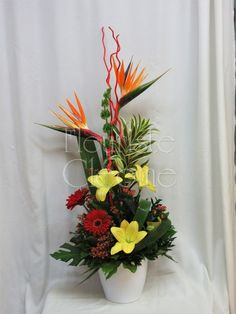 Corbeille funéraire Arrangement funéraire de style exotique Arrangements Funéraires, Art Floral, Paradise, Birds, Plants, Style, Floral Design, Flower Arrangements, Exotic