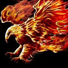 Phoenix by on DeviantArt Fantasy Creatures, Mythical Creatures, Phoenix Bird Images, Phoenix Artwork, Mythological Animals, Art Optical, Texture Packs, Fractal Art, Fractals