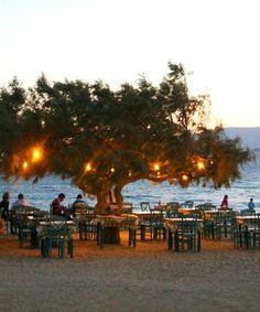 Taverna Paradiso - Plaka, Naxos Island (Cyclades), Greece