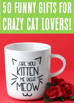 50 Funny Cat Gift Ideas That Will Have You Laughing So Hard! {Purrfect Gift Ideas for the Crazy Cat Lady on Your List!} 50 Funny Cat Gift Ideas That Will Have You Laughing So Hard! {Purrfect Gift Ideas for the Crazy Cat Lady on Your List! Cat Lover Gifts, Cat Gifts, Cat Lovers, Life Hacks Every Girl Should Know, Teen Girl Gifts, Cool Gifts For Women, Mothers Day Presents, Valentines Gifts For Her, Grandpa Gifts