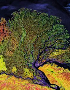 The image above was taken by Landsat 7, the newest member of the Landsat family. It shows the delta of the Lena River, one of the largest rivers in the world. The Lena Delta Reserve is the most extensive protected wilderness area in Russia. It is an important refuge and breeding grounds for many species of Siberian wildlife.