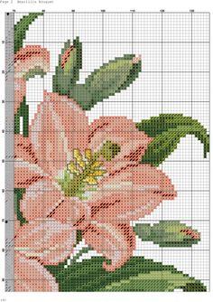 Amarillis Bouquet-002