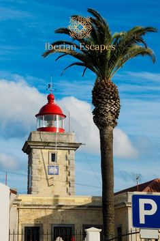 Close to the west coast, In a sea of beaches, grottoes and sandstone cliffs, stands Lagos, one of the most beautiful towns in the Algarve coastline. #lagosportugal #beautifulplaces Algarve, Walking Map, Most Beautiful, Beautiful Places, Famous Beaches, Sandy Beaches, Fishing Boats, West Coast, Saints